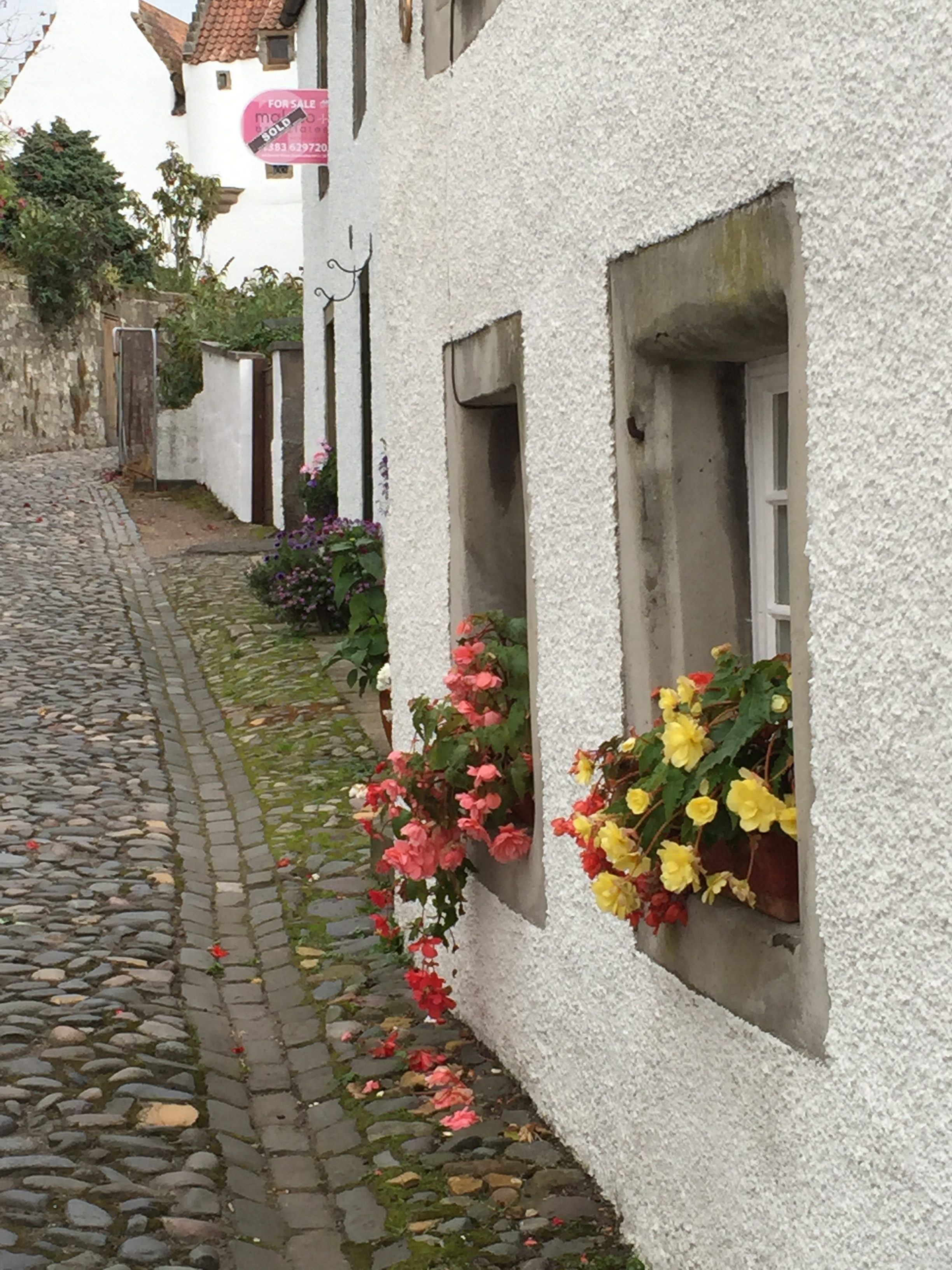 Village street with cobblestones, houses, and flowers in windowboxes.